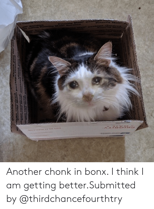 Getting Better: Another chonk in bonx. I think I am getting better.Submitted by @thirdchancefourthtry