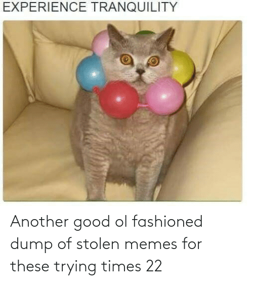 Good Ol: Another good ol fashioned dump of stolen memes for these trying times 22
