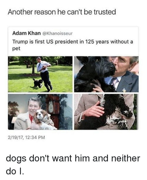 Dogs, Memes, and Trump: Another reason he can't be trusted  Adam Khan  a Khanoisseur  Trump is first US president in 125 years without a  pet  2/19/17, 12:34 PM dogs don't want him and neither do I.