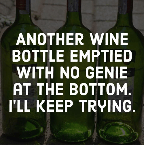 Memes, Wine, and 🤖: ANOTHER WINE  BOTTLE EMPTIED  WITH NO GENIE  AT THE BOTTOM  I'LL KEEP TRYING  RY