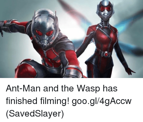 Memes, 🤖, and Ant Man: Ant-Man and the Wasp has finished filming!  goo.gl/4gAccw  (SavedSlayer)