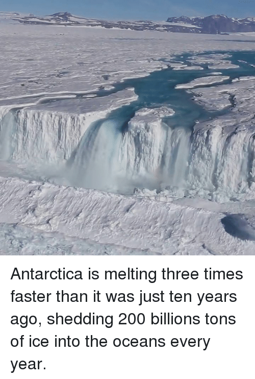 Bailey Jay, Memes, and Antarctica: Antarctica is melting three times faster than it was just ten years ago, shedding 200 billions tons of ice into the oceans every year.