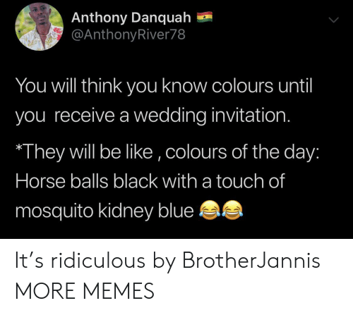 mosquito: Anthony Danquah  @AnthonyRiver78  You will think yoOu know colours until  you receive a wedding invitation.  They will be like ,colours of the day:  Horse balls black with a touch of  mosquito kidney blue It's ridiculous by BrotherJannis MORE MEMES