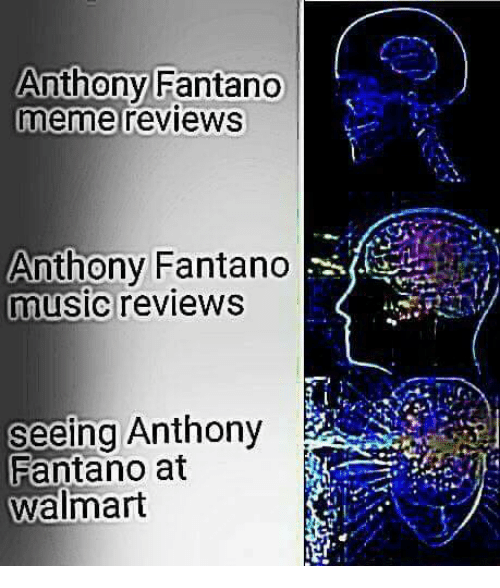 Dank, Music, and Walmart: Anthony Fantano  meme reviews  Anthony Fantano  music reviews  Seeing Anthony  Fantano at  Walmart