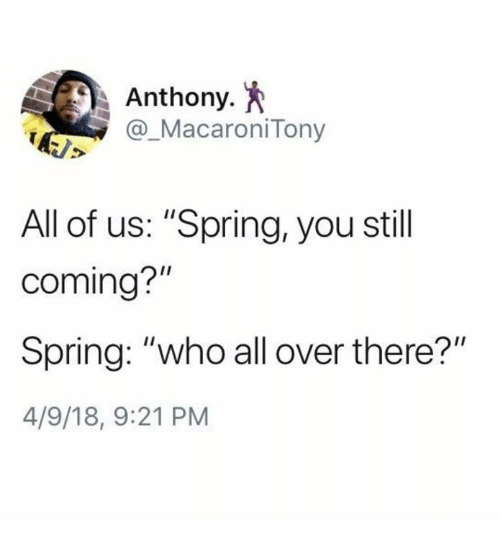 """Dank, Spring, and 🤖: Anthony.  @_MacaroniTony  All of us: """"Spring, you stil  I1  coming?  Spring: """"who all over there?""""  4/9/18, 9:21 PM"""
