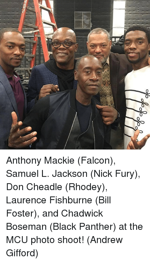 Memes, Samuel L. Jackson, and Black: Anthony Mackie (Falcon), Samuel L. Jackson (Nick Fury), Don Cheadle (Rhodey), Laurence Fishburne (Bill Foster), and Chadwick Boseman (Black Panther) at the MCU photo shoot!  (Andrew Gifford)