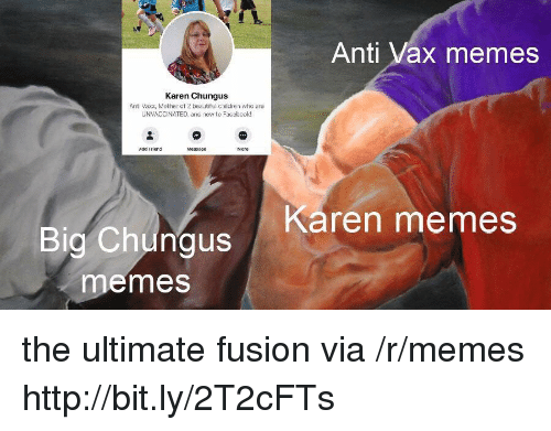 fusion: Anti Vax memes  Karen Chungus  Anti Vaxx, Mother of 2 beautiful children who are  UNVACCINATED, and new to Faccbook!  Add Friend  Karen memes  Big Chungus  emes the ultimate fusion via /r/memes http://bit.ly/2T2cFTs