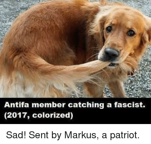 Memes, Sad, and Patriotism: Antifa member catching a fascist.  (2017, colorized) Sad!  Sent by Markus, a patriot.