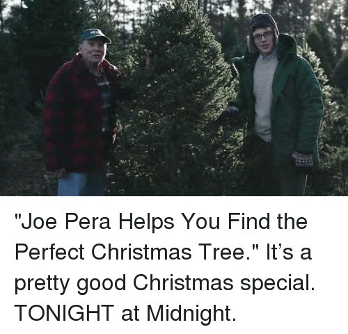 Anting Sea Are Joe Pera Helps You Find the Perfect Christmas Tree ...