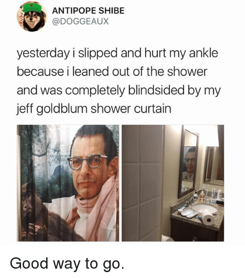 jeffe: ANTIPOPE SHIBE  @DOGGEAUX  yesterday i slipped and hurt my ankle  because i leaned out of the shower  and was completely blindsided by my  jeff goldblum shower curtain Good way to go.
