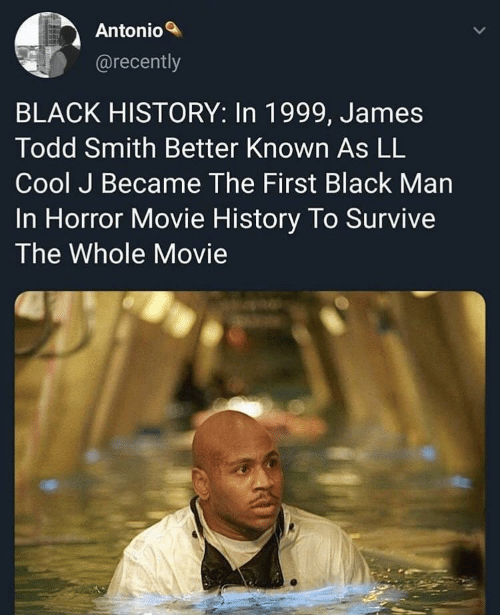 horror movie: Antonio  @recently  BLACK HISTORY: In 1999, James  Todd Smith Better Known As LL  Cool J Became The First Black Man  In Horror Movie History To Survive  The Whole Movie