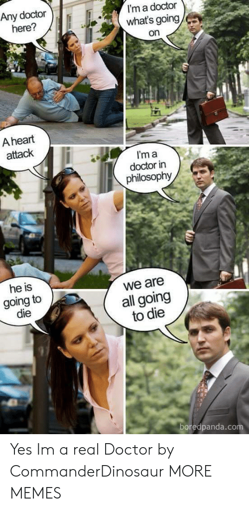 Im A Doctor: Any doctor  here?  I'm a doctor  what's going  on  A heart  attack  I'm a  doctor in  philosophy  he is  going to  die  we are  all going  to die  97  boredpanda.co Yes Im a real Doctor by CommanderDinosaur MORE MEMES