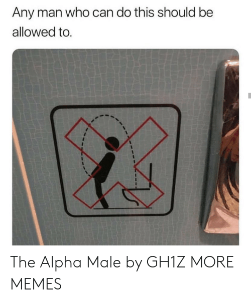 Any Man: Any man who can do this should be  allowed to. The Alpha Male by GH1Z MORE MEMES