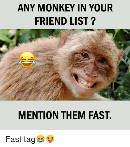 Memes, Monkey, and 🤖: ANY MONKEY IN YOUR  FRIEND LIST?  MENTION THEM FAST. Fast tag😂😝