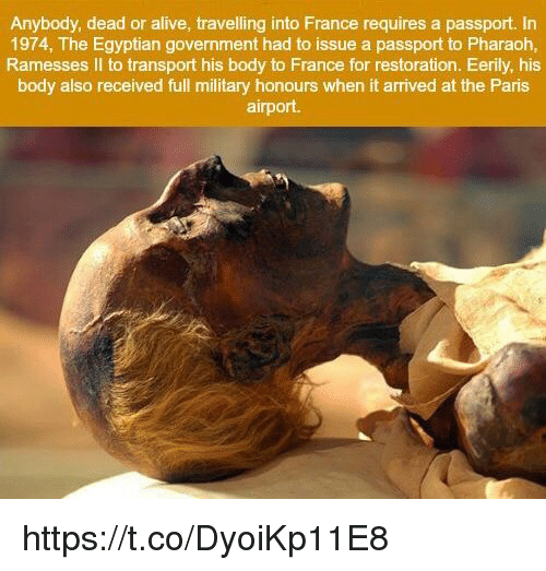 Alive, Dead or Alive, and France: Anybody, dead or alive, travelling into France requires a passport. In  1974, The Egyptian government had to issue a passport to Pharaoh,  Ramesses II to transport his body to France for restoration. Eerily, his  body also received full military honours when it arrived at the Paris  airport. https://t.co/DyoiKp11E8