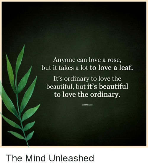 Memes, Rose, and 🤖: Anyone can love a rose  but it takes a lot to love a leaf.  It's ordinary to love the  beautiful, but it's beautiful  to love the ordinary The Mind Unleashed
