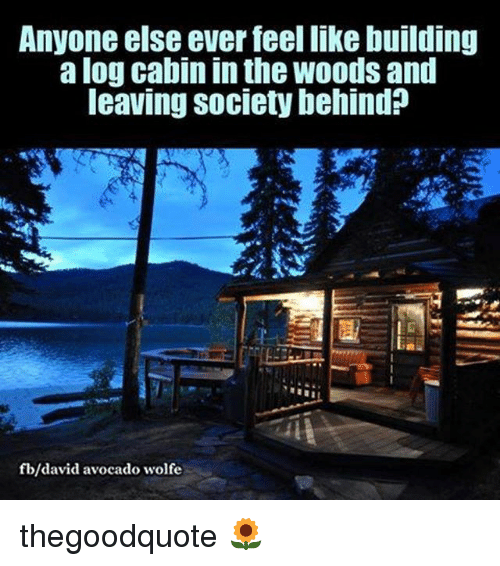 cabin in the woods: Anyone else ever feel like building  a log Cabin In the Woods and  leaving Society behind  b/david avocado wolfe thegoodquote 🌻