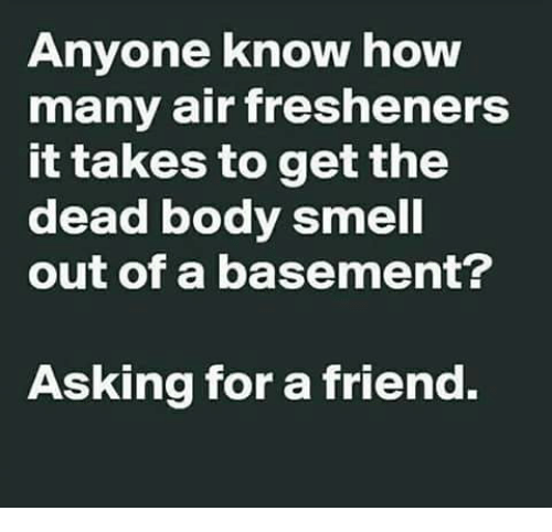 Memes, Smell, and Anyone Know: Anyone know how  many air fresheners  it takes to get the  dead body smell  out of a basement?  Asking for a friend.