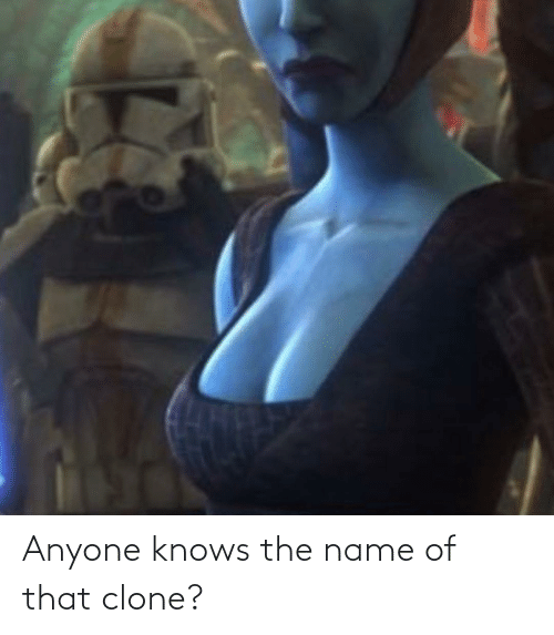 name of: Anyone knows the name of that clone?