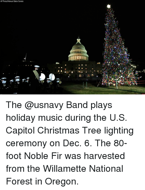 fir: AP Photo/Manuel Balce Ceneta The @usnavy Band plays holiday music during the U.S. Capitol Christmas Tree lighting ceremony on Dec. 6. The 80-foot Noble Fir was harvested from the Willamette National Forest in Oregon.