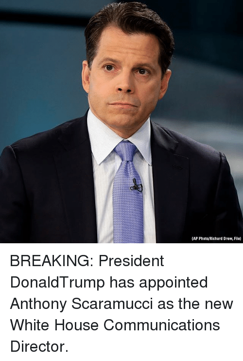 Memes, White House, and House: (AP Photo/Richard Drew, File) BREAKING: President DonaldTrump has appointed Anthony Scaramucci as the new White House Communications Director.