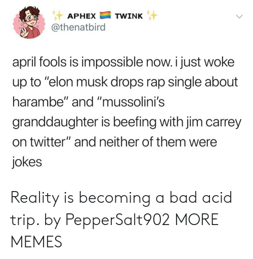 """Beefing: APHEXTWINK  @thenatbird  april fools is impossible now. i just woke  up to """"elon musk drops rap single about  harambe"""" and """"mussolini's  granddaughter is beefing with jim carrey  on twitter"""" and neither of them were  jokes Reality is becoming a bad acid trip. by PepperSalt902 MORE MEMES"""