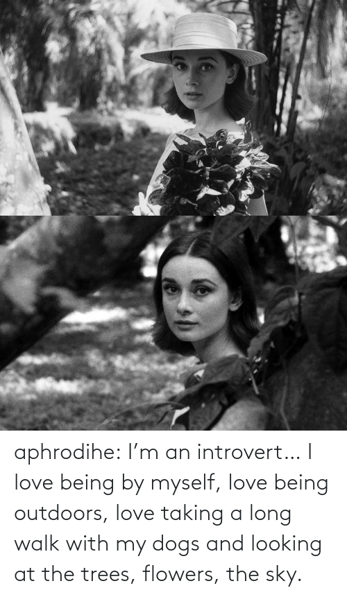 By Myself: aphrodihe: I'm an introvert… I love being by myself, love being outdoors, love taking a long walk with my dogs and looking at the trees, flowers, the sky.