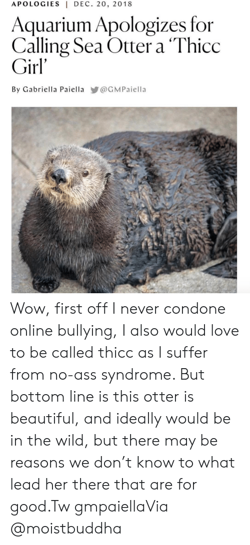 sea otter: APOLOGIES|DEC. 20, 2018  Aquarium Apologizes for  Calling Sea Otter a 'Thicc  Girl'  By Gabriella Paiella @GMPaiella Wow, first off I never condone online bullying, I also would love to be called thicc as I suffer from no-ass syndrome. But bottom line is this otter is beautiful, and ideally would be in the wild, but there may be reasons we don't know to what lead her there that are for good.Tw gmpaiellaVia @moistbuddha