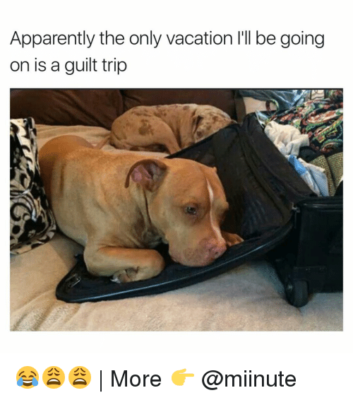 Funny, Vacation, and Trip: Apparently the only vacation l'll be going  on is a guilt trip 😂😩😩   More 👉 @miinute