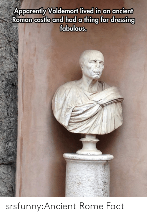 voldemort: Apparently Voldemort lived in an ancient  Roman castle and had a thing for dressing  fabulous. srsfunny:Ancient Rome Fact