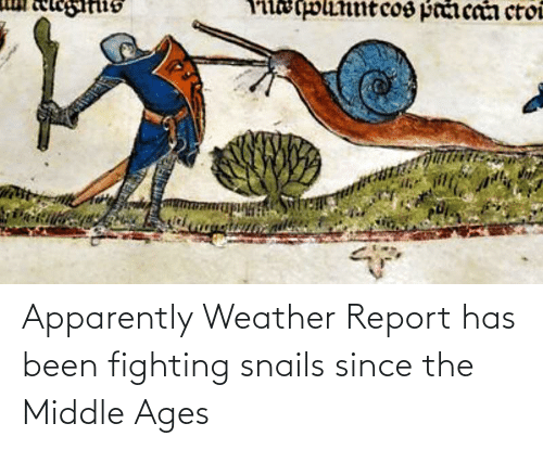 middle ages: Apparently Weather Report has been fighting snails since the Middle Ages