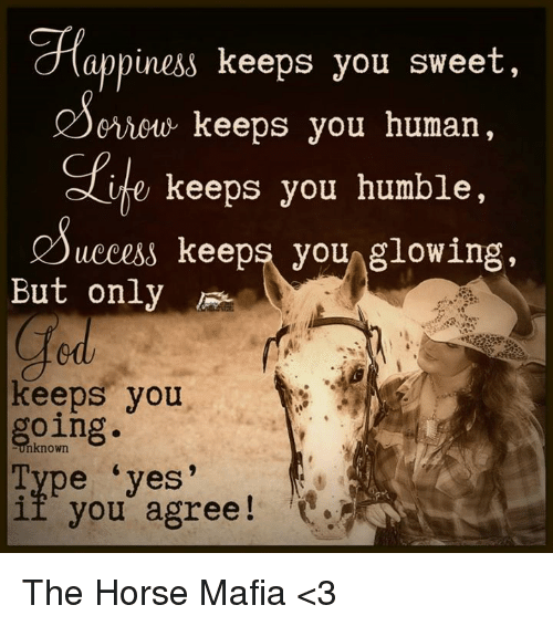 humbleness: appiness keeps you sweet,  criouu keeps you human,  e keeps you humble,  uccess keeps you  glowing,  But only  keeps you  going.  pe yes'  if you agree The Horse Mafia <3
