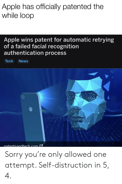 patent: Apple has officially patented the  while loop  Apple wins patent for automatic retrying  of a failed facial recognition  authentication process  Tech  News  inatentsandtech com C Sorry you're only allowed one attempt. Self-distruction in 5, 4.
