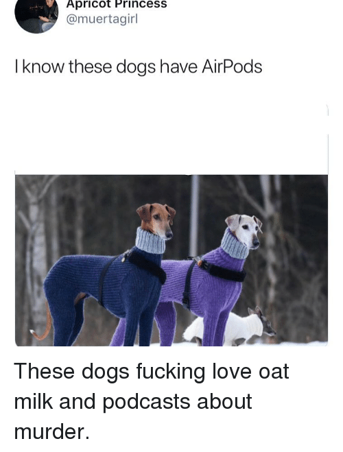 oat: Apricot Princess  @muertagirl  I know these dogs have AirPods These dogs fucking love oat milk and podcasts about murder.