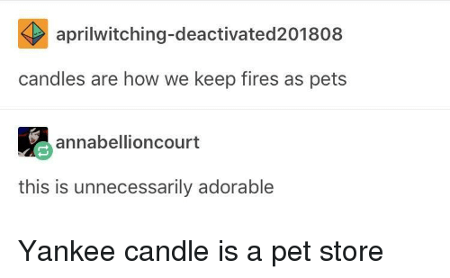 Yankee Candle, Pets, and Candles: aprilwitching-deactivated201808  candles are how we keep fires as pets  annabellioncourt  this is unnecessarily adorable Yankee candle is a pet store