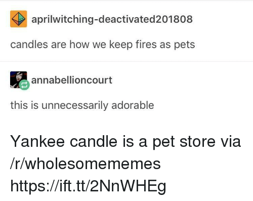 Pet Store: aprilwitching-deactivated201808  candles are how we keep fires as pets  annabellioncourt  this is unnecessarily adorable Yankee candle is a pet store via /r/wholesomememes https://ift.tt/2NnWHEg
