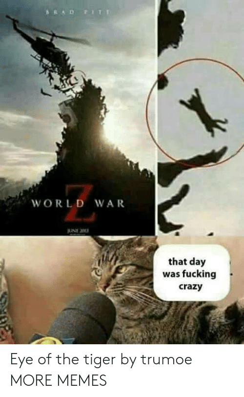 Eye Of The Tiger: ARAD FIT  WORLD WAR  JUNE 2  that day  was fucking  crazy Eye of the tiger by trumoe MORE MEMES