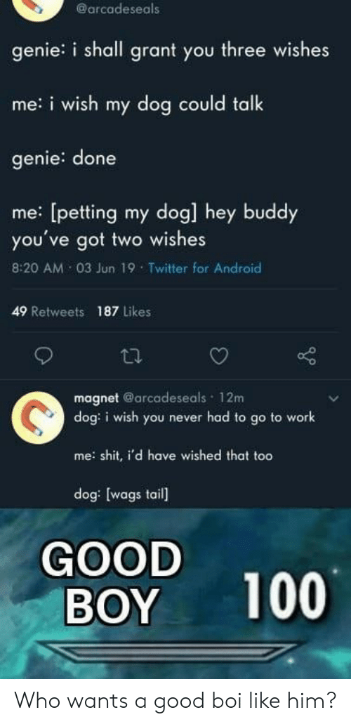 genie: @arcadeseals  genie: i shall grant you three wishes  me:i wish my dog could talk  genie: done  me: [petting my dog] hey buddy  you've got two wishes  8:20 AM 03 Jun 19 Twitter for Android  49 Retweets  187 Likes  magnet @arcadeseals 12m  dog: i wish you never had to go to work  me shit, i'd have wished that too  dog: [wags tail  GOOD  BOY  100 Who wants a good boi like him?