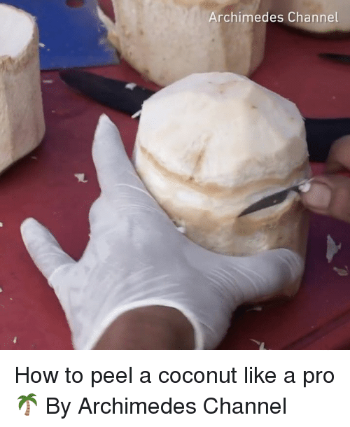 Dank, How To, and Pro: Archimedes Channel How to peel a coconut like a pro 🌴 By Archimedes Channel