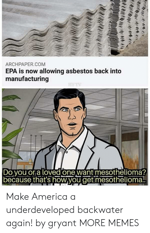 asbestos: ARCHPAPER.COM  EPA is now allowing asbestos back into  manufacturing  Do vou or a loved one want mesothelioma?  because that's how,you get mesothelioma! Make America a underdeveloped backwater again! by gryant MORE MEMES
