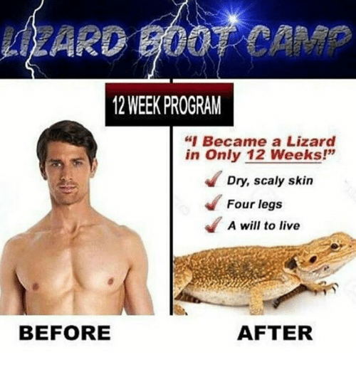 """Programing: ARD GOOT CAMP  12 WEEK PROGRAM  """"I Became a Lizard  in Only 12 Weeks!'""""  Dry, scaly skin  Four legs  A will to live  BEFORE  AFTER"""