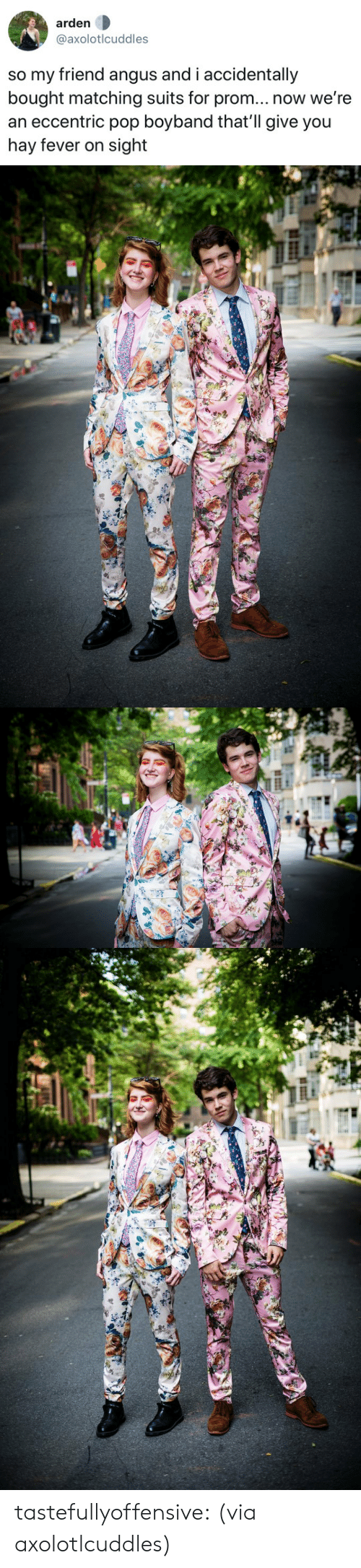 angus: arden  @axolotlcuddles  so my friend angus and i accidentally  bought matching suits for prom... now we're  an eccentric pop boyband that'll give you  hay fever on sight tastefullyoffensive:  (via axolotlcuddles)