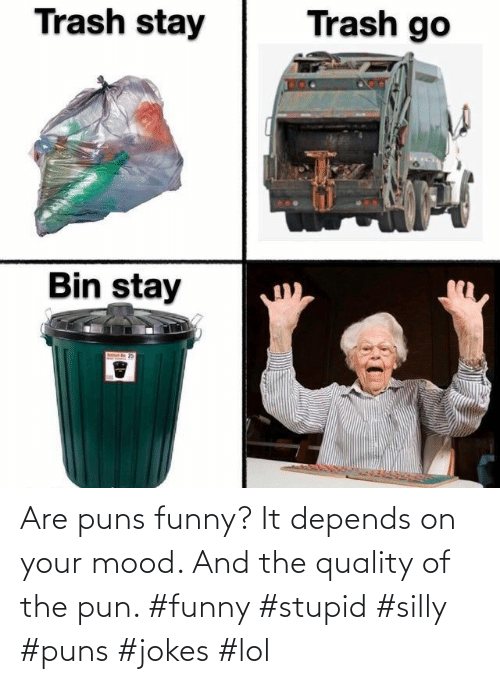 pun: Are puns funny? It depends on your mood. And the quality of the pun. #funny #stupid #silly #puns #jokes #lol