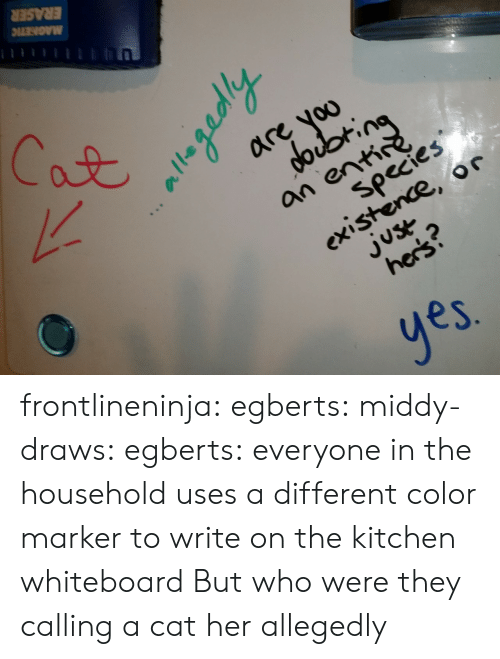 whiteboard: are voo  an ent  species  existence, or  2  es frontlineninja:  egberts:  middy-draws:  egberts:  everyone in the household uses a different color marker to write on the kitchen whiteboard  But who were they calling a cat  her  allegedly