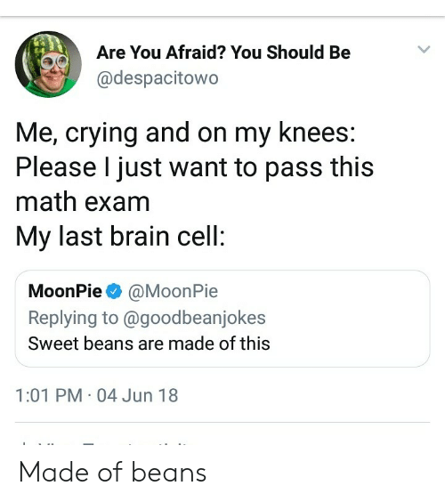 moonpie: Are You Afraid? You Should Be  @despacitowo  Me, crying and on my knees:  Please I just want to pass this  math exam  My last brain cell:  MoonPie@MoonPie  Replying to @goodbeanjokes  Sweet beans are made of this  1:01 PM 04 Jun 18 Made of beans