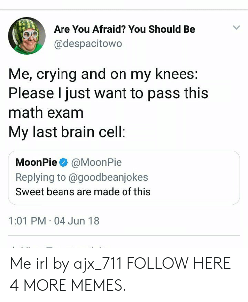 moonpie: Are You Afraid? You Should Be  @despacitowo  Me, crying and on my knees  Please I just want to pass this  math exam  My last brain cell  MoonPie @MoonPie  Replying to @goodbeanjokes  Sweet beans are made of this  1:01 PM 04 Jun 18 Me irl by ajx_711 FOLLOW HERE 4 MORE MEMES.