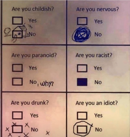 Childish: Are you childish?  Are you nervous?  Yes  Yes  No  No  Are you racist?  Are you paranoid?  Yes  Yes  No , why?  No  Are you drunk?  Are you an idiot?  Yes  Yes  No  No