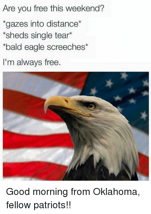 are you free this weekend gazes into distance sheds single 22737193 search are you free memes on me me,Are You Free This Weekend Meme