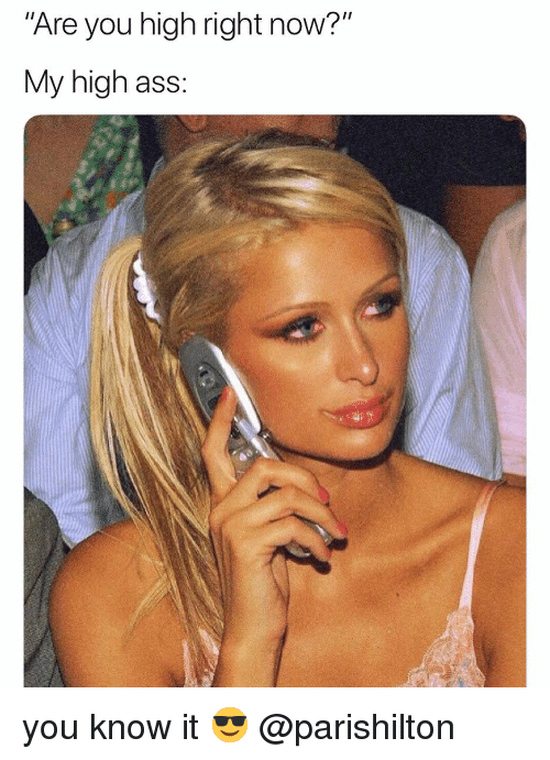 """Ass, Weed, and Marijuana: Are you high right now?""""  My high ass: you know it 😎 @parishilton"""