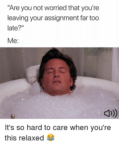 """You, Assignment, and This: """"Are you not worried that you're  leaving your assignment far too  late?""""  Me:  더))) It's so hard to care when you're this relaxed 😂"""